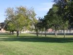 CCUMC Oct 2013 041